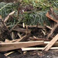 Wood And Horticultural Waste Recycling Zero Waste Singapore
