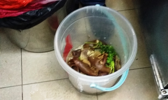 Food waste recycling trial - Ang Mo Kio 3