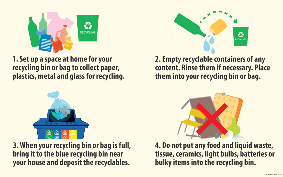 Learn How To Recycle At Home