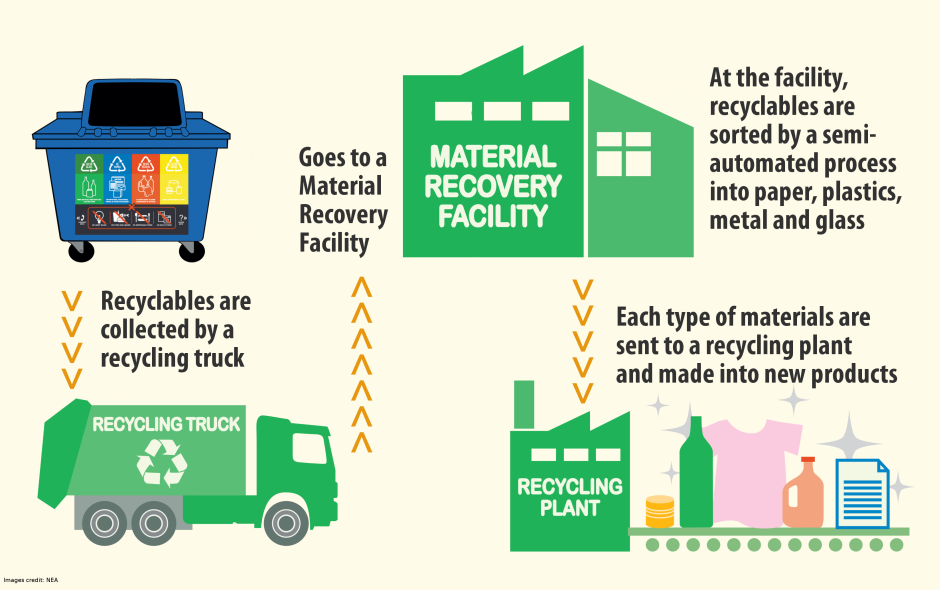 Learn What Happens To The Recyclables After Collection