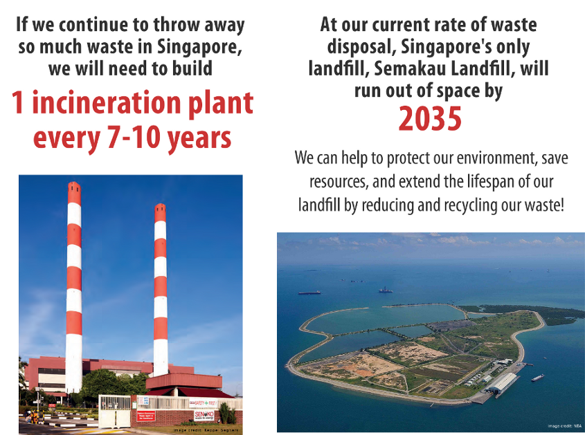 Understand Why We Need To Recycle (incineration plant and landfill)